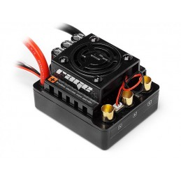 Flux Rage 1:8th scale 80Amp...